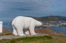 IJsbeer-Hammerfest