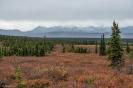 Alaska-Canadareis